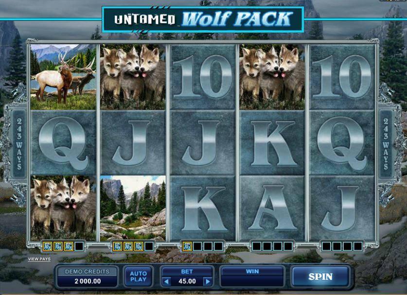 Untamed Wolf online automat – Recenze automatu